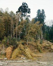 Hans-Christian Schink: Kesennuma, Matsuiwa (2), Miyagi Prefecture