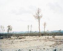 Hans-Christian Schink: Yamamoto, Kasahama (2), Miyagi Prefecture