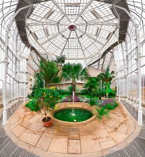 Raissa Venables: Pillnitz Palm House