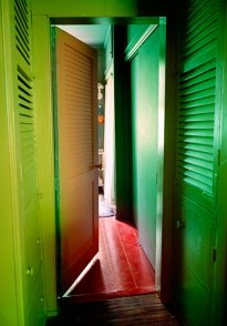 Raissa Venables: Green Blinds