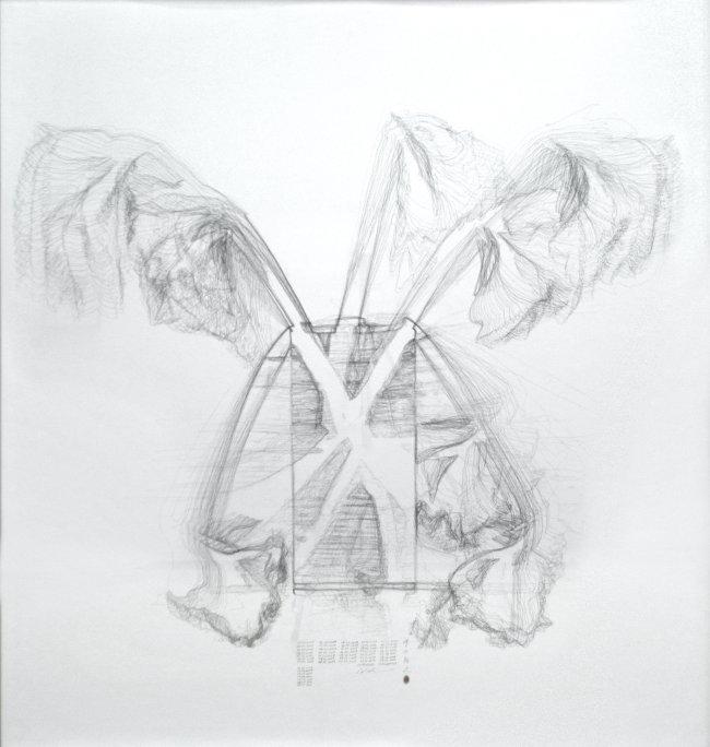 Hiroyuki Masuyama: Amaryllis No.02, 25. 11. 2019 - 05.01.2020, 2019/2020, pencil on paper, 130  x 140 x 6 cm