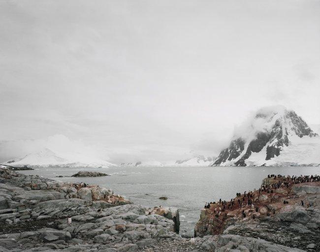Hans-Christian Schink: Antarctica (3)