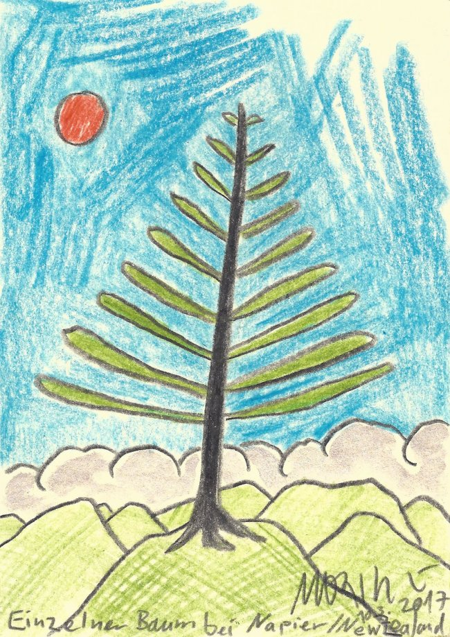 Moritz Götze: Einzelner Baum bei Napier