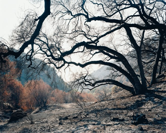 Hans-Christian Schink: Glendora Canyon