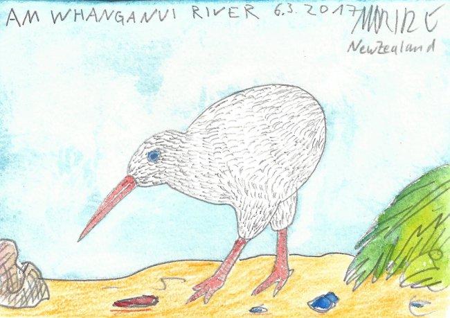 Moritz Götze: Am Whanganui River
