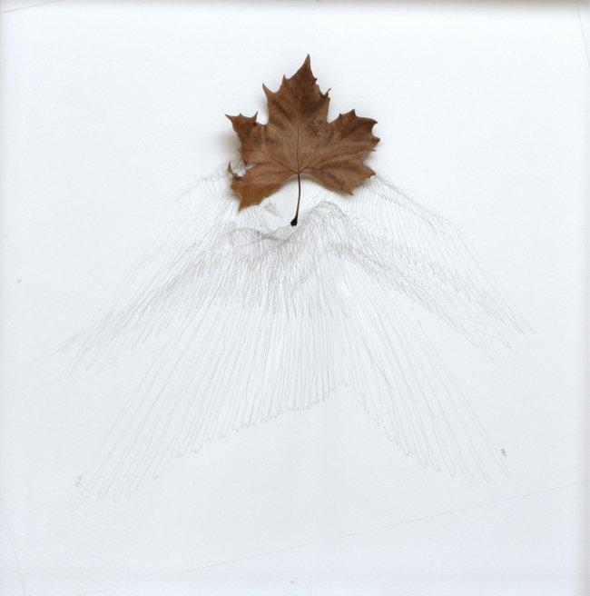 Hiroyuki Masuyama: Platan No.2, 18.12. 2019 09:40 - 15:20, 2019, pencil on paper, 60 x 60 cm