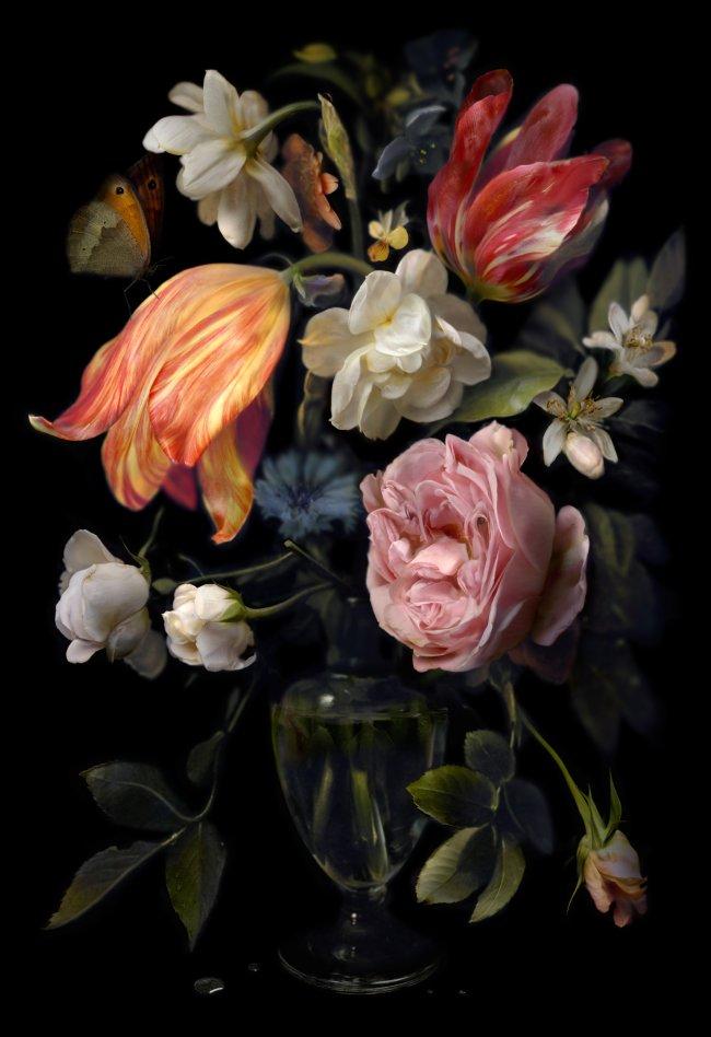 Hiroyuki Masuyama: Still Life. Daniel Seghers No. 01, 2012, LED Lightbox, Auflage 7+1, 50 x 34 x 4 cm