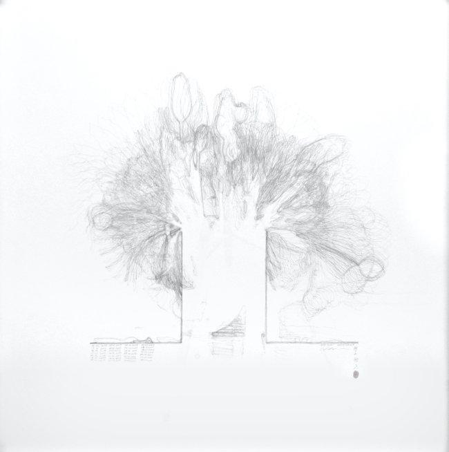Hiroyuki Masuyama: Tulip No.1, 2019, pencil on paper, 100 x 100 x 4 cm