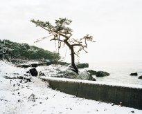 Hans-Christian Schink: Kesennuma, Hajikamiiwaisaki (1), Miyagi Prefecture