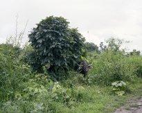 Hans-Christian Schink: Nyaung Shwe (2)
