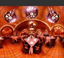 Raissa Venables: Oyster Bar, New York