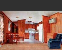 Raissa Venables: Mobile Home