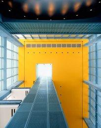 Raissa Venables: Shaw Center Ceiling, Baton Rouge