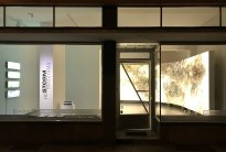 Hiroyuki Masuyama: Ausstellungsansicht Frankfurt Storm