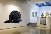 Annette Schröter: Installation Galerie Rothamel 2010