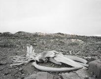 Hans-Christian Schink: Antarctica 10