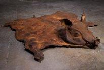 Dana Meyer: Das Phlegma - Schwein