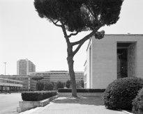 Hans-Christian Schink: Via Ciro il Grande (2)