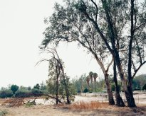 Hans-Christian Schink:  San Bernardino, Daley Canyon Road