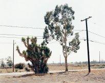 Hans-Christian Schink:  San Bernardino, Washington Avenue