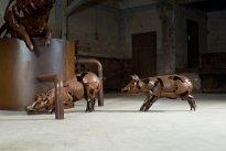 Dana Meyer: Schweine Ansicht 3